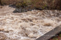 WSR-Husum-flood-12-9-15-0878