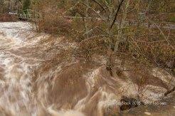 WSR-Husum-flood-12-9-15-0893