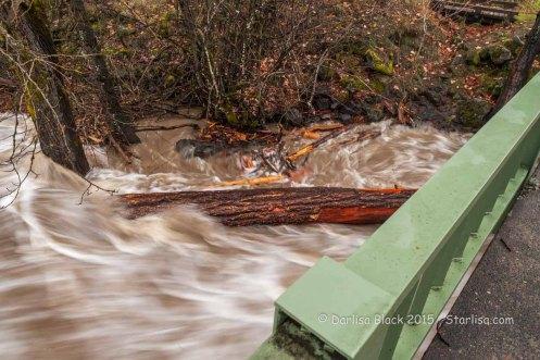 WSR-Husum-flood-12-9-15-0970