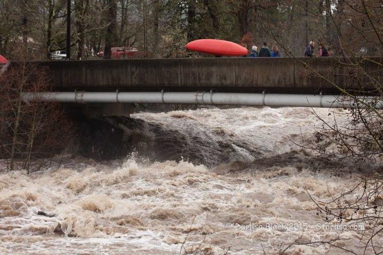 WSR-Husum-Kayaker-12-9-15-0828