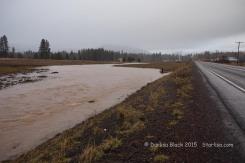 WSR-TroutLake-flood-12-9-15-0993