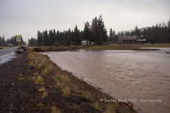 WSR-TroutLake-flood-12-9-15-0994