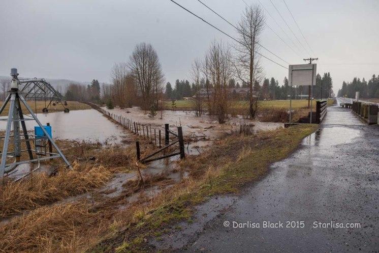 WSR-TroutLake-flood-12-9-15-0999