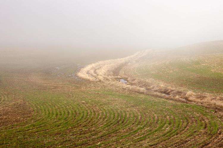 Goldendale-Fog_1819