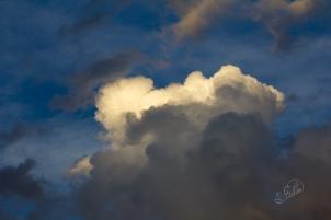 Clouds-Golden-websize-5239