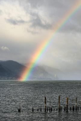 Davids_Rainbow-3743 - Copy