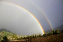 Rainbow_5792_20090108