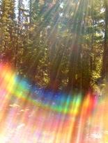 RainbowLight-2007-BCM_3123