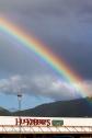Rosaurs-Rainbow_4843 - Copy