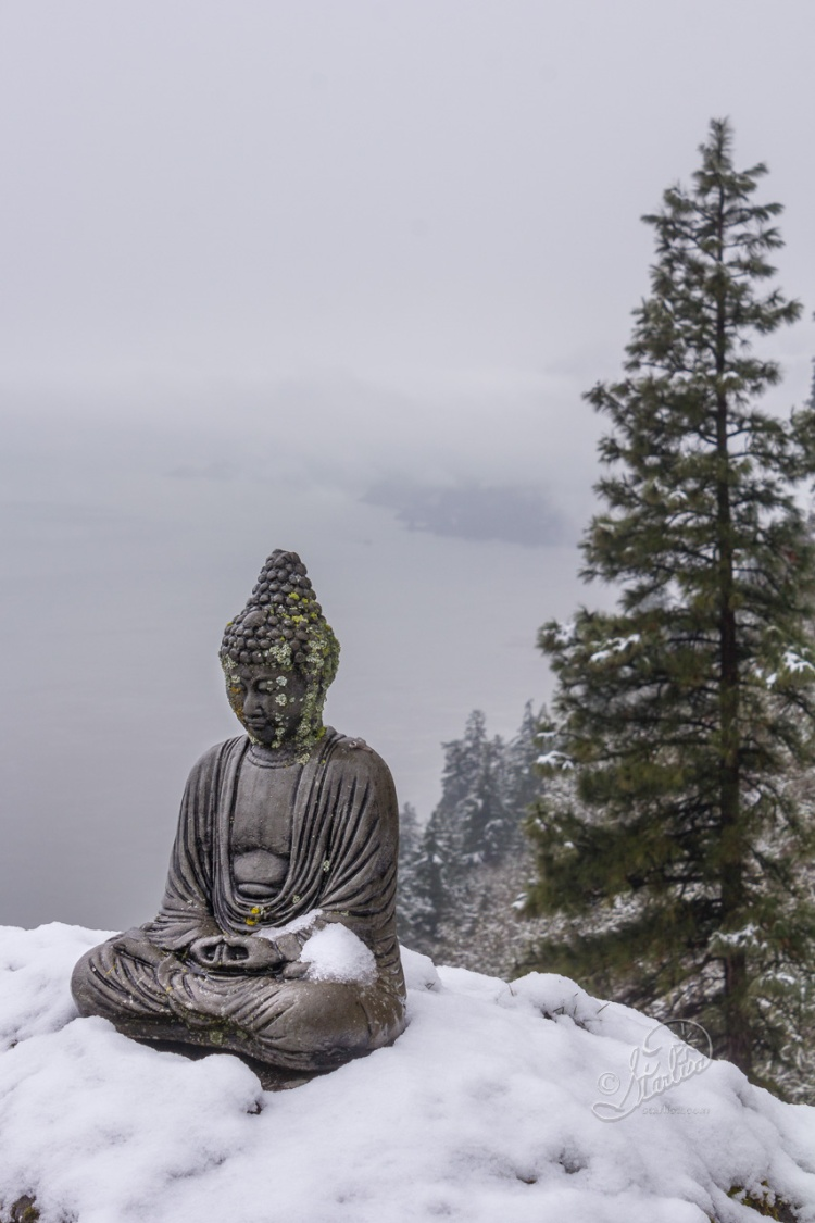 Buddha in Snow, in memory of Loved Ones.