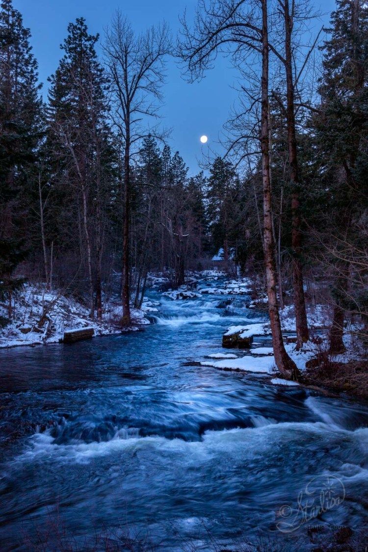 TroutCreek-Moonset_20180303_7374-2