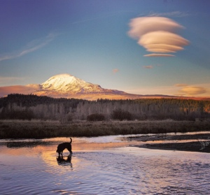 Image of lenticular clouds over Mt. Adams reflected in a lake. This is also a link to my best photo album on Starlisa.smugmug.com
